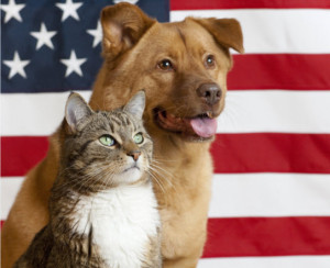 Dog Cat Fence made in the USA